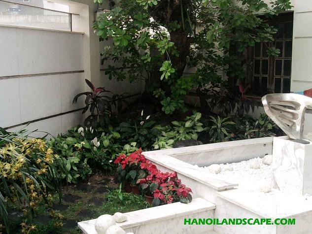 Sân vườn-Cây xanh Biệt thự Thanh Xuân