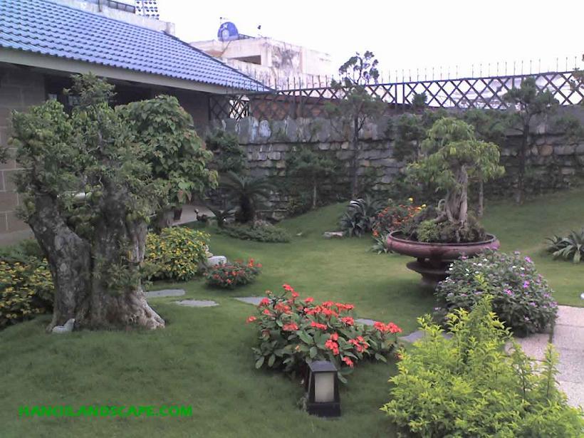 Sân vườn trên sân thượng, Cát Linh, Hà Nội